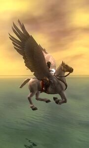Pegasus inflight 2