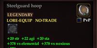 Steelguard hoop (31)