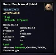 Runed Beech Wood Shield