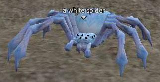 File:White spider.jpg