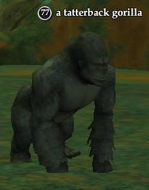 File:A tatterback gorilla.jpg