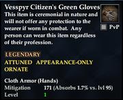 Vesspyr Citizen's Green Gloves