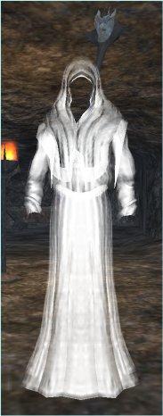 File:Grim Heretic (Apprentice).jpg