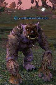 A spell-shocked slobberjaw