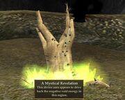A Mystical Revelation