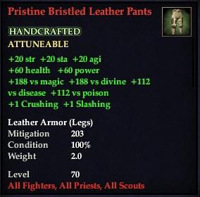 File:Pristine Bristled Leather Pants.jpg