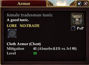 Female tradesman tunic