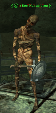 A Faro' Nuk adjutant