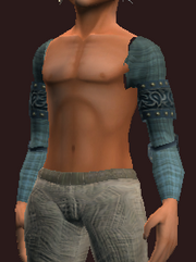Blue Shoulderpads of the Far Seas Traders (Equipped)