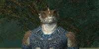 Grandmaster Raakaz of the Tynonnium Shackle
