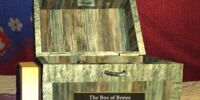 The Bones in the Box
