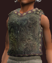 Seer's Rustic Hauberk (Equipped)