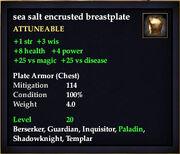 Sea salt encrusted breastplate