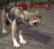 Calathin