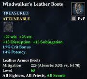 Windwalker's Leather Boots