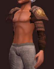 Earthkeeper's Shoulderpads (Equipped)