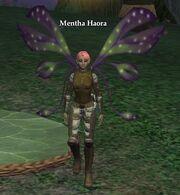 Mentha Haora