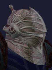 Helm of the Vanquisher (vis)