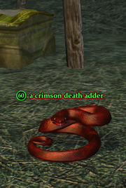 A crimson death adder