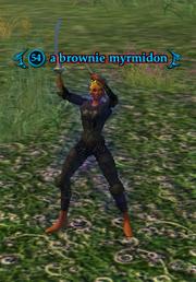 A brownie myrmidon