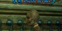 A Sulite devotee