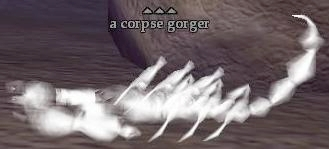 File:A corpse gorger.jpg