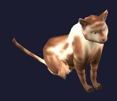 File:A highpass shorthair cat (Visible).jpg
