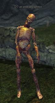 An undead explorer