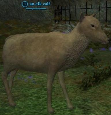 File:Elk calf.jpg