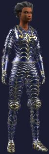 Hardened Ice (Armor Set) (Visible)