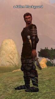 A fallen blackguard
