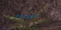 A Humator eggbearer