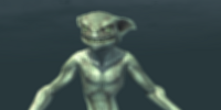 A deep spawn raider