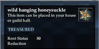 Wild hanging honeysuckle