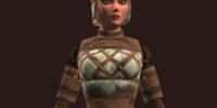 Windcaller's (Armor Set)
