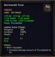 Stormwrath Tunic