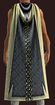 Imbued Cape of the Swamp (Equipped)