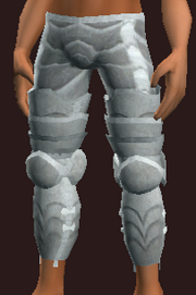 Gallant Dragoon's Legplates (Equipped)