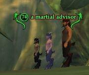 A martial advisor