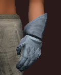 Holy Acolyte's Plate Gloves (Equipped)