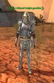A Paineel knight guardian