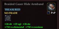 Braided Gazer Hide Armband
