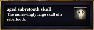 File:Aged sabretooth skull.jpg
