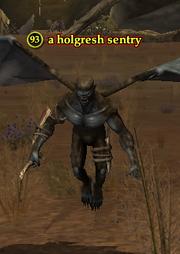 A holgresh sentry
