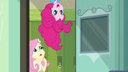 Fluttershy and Pinkie Pie enter EG