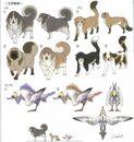 Animales del Nido