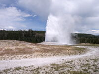 Old Faithful.jpg