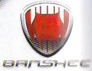 Logo Banshee