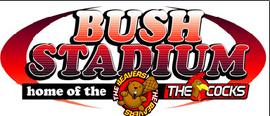 BushStadium.PNG