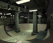 Back Side Skate Boards IV.jpg